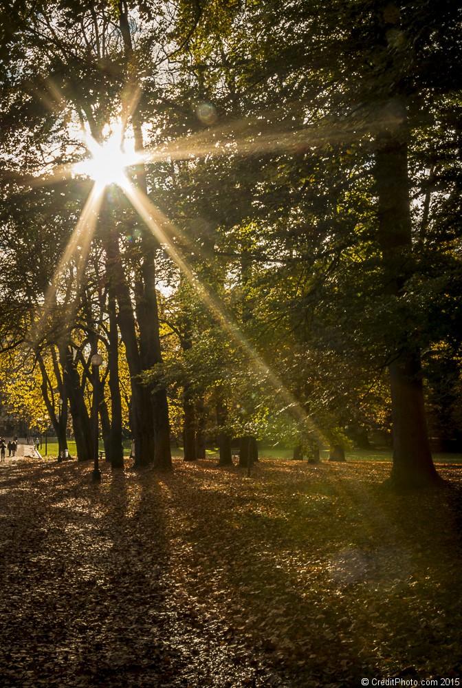 Couleur d'automne sur le Parc de la Tête d'Or