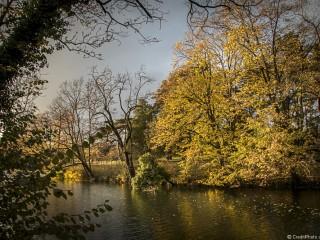 Belles couleurs d'Automne au Parc de la Tête d'Or