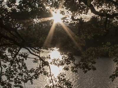 Soir d'Automne sur le lac Tête d'or
