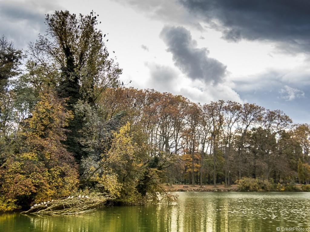 Le lac du Parc de la Tête d'Or