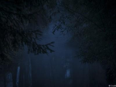 Brumes sur la rivière du Parc Tête d'Or