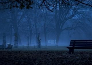 Banc dans la brume du petit matin froid