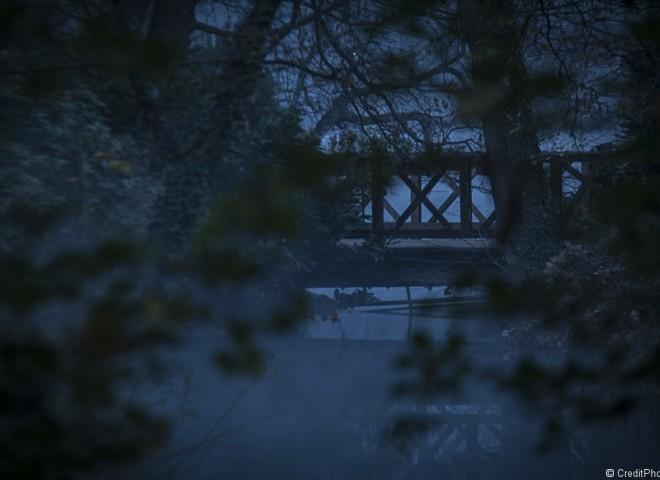Pont au Parc Tête d'Or